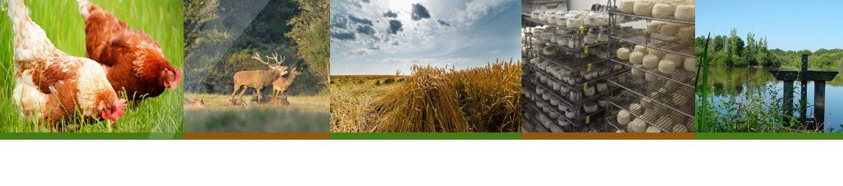 Agriculteurs ruraux datant
